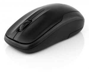 Mouse - Low Resolution
