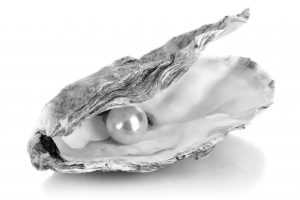 Oyster - High Resolution
